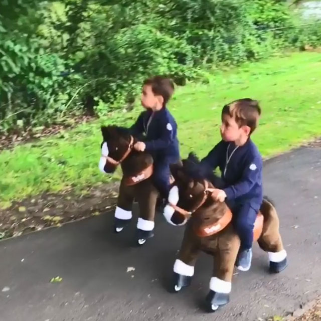 Twin Pony Riders