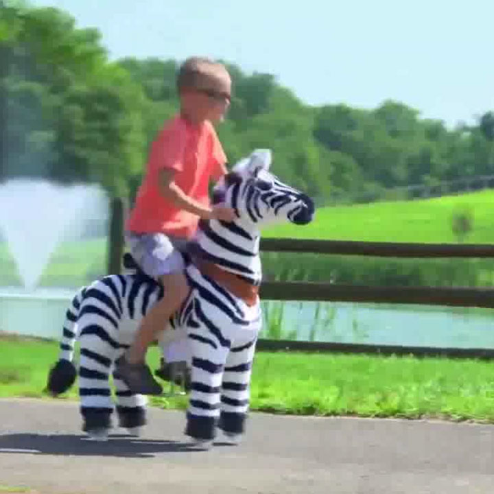 Maxim's Ride on Zebra toy