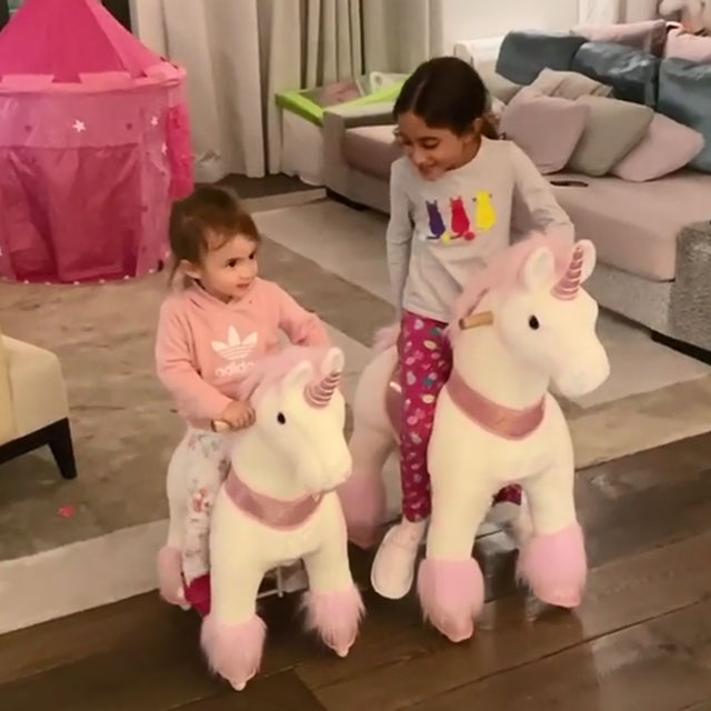 The rideable unicorn